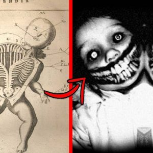 Top 10 Mysterious Experiments Conducted By The CIA