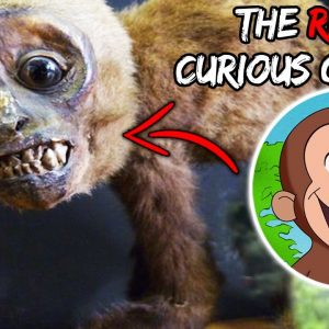 Top 10 Scary Curious George Theories