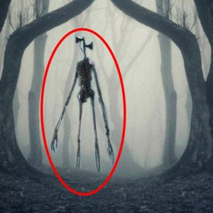 Top 10 Scary Sirenhead Real Life Sightings - Part 2